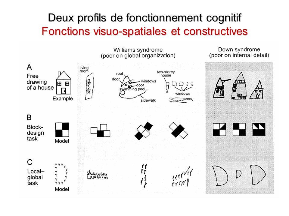 Deux profils de fonctionnement cognitif Fonctions visuo-spatiales et constructives
