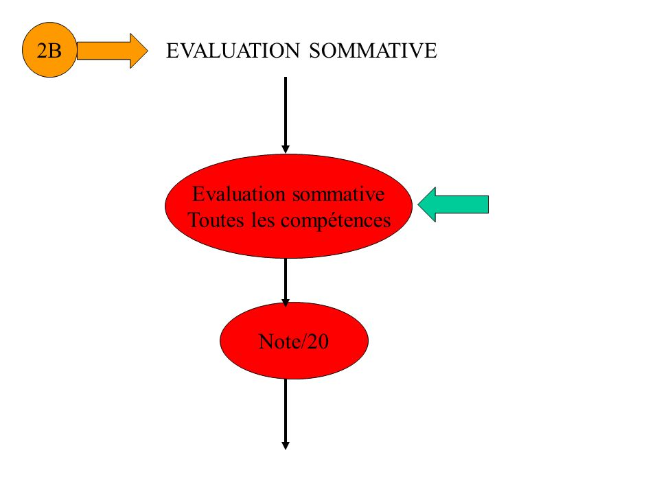 2B Evaluation sommative Toutes les compétences Note/20 EVALUATION SOMMATIVE
