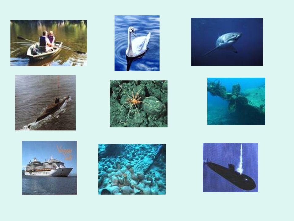 Résumé : La quantité d eau n a pas d influence sur la flottabilité d un objet (1 séance).