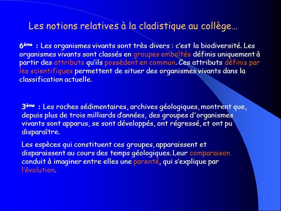 la cladistique et la classification phylogénétique du vivant dans les programmes Cycle 3 Sixième troisième Première ES & L Terminale S BCPST & Université