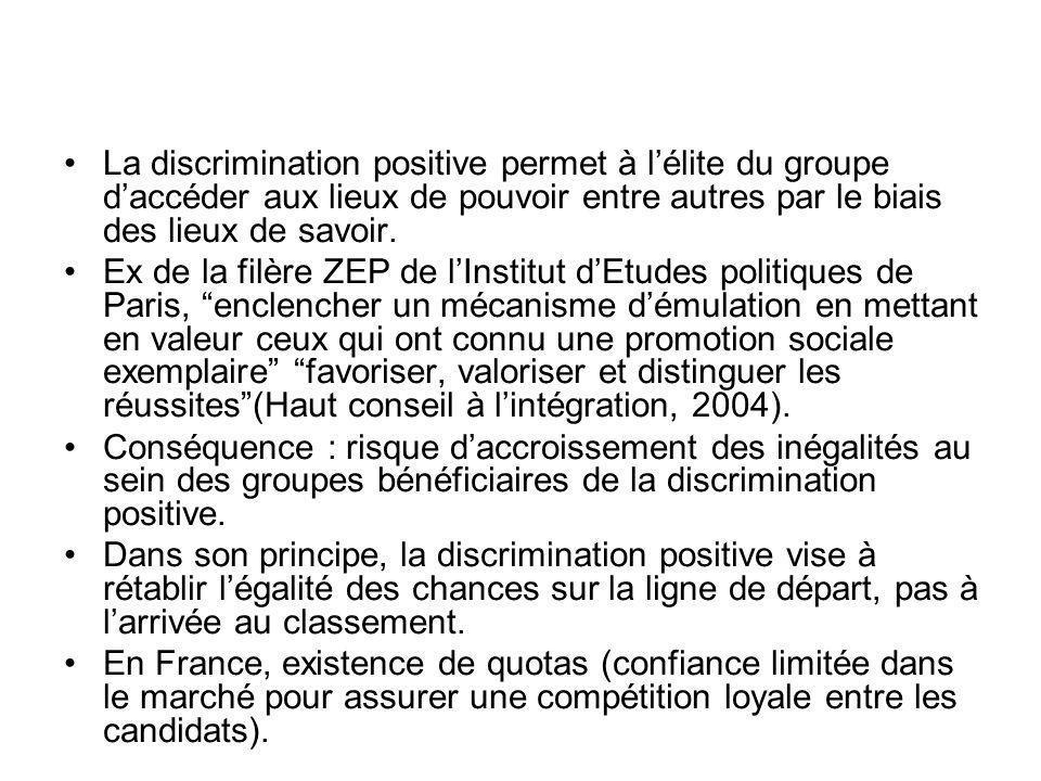 La discrimination positive permet à lélite du groupe daccéder aux lieux de pouvoir entre autres par le biais des lieux de savoir. Ex de la filère ZEP