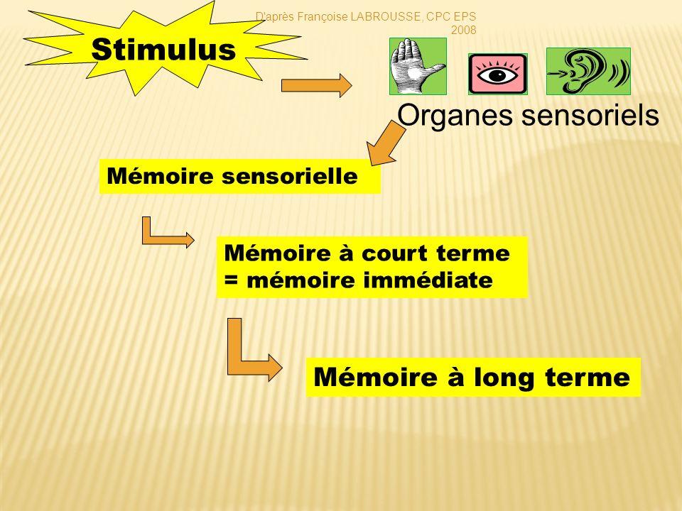Mémoire à court terme = mémoire immédiate Stimulus Organes sensoriels Mémoire sensorielle Mémoire à long terme D'après Françoise LABROUSSE, CPC EPS 20