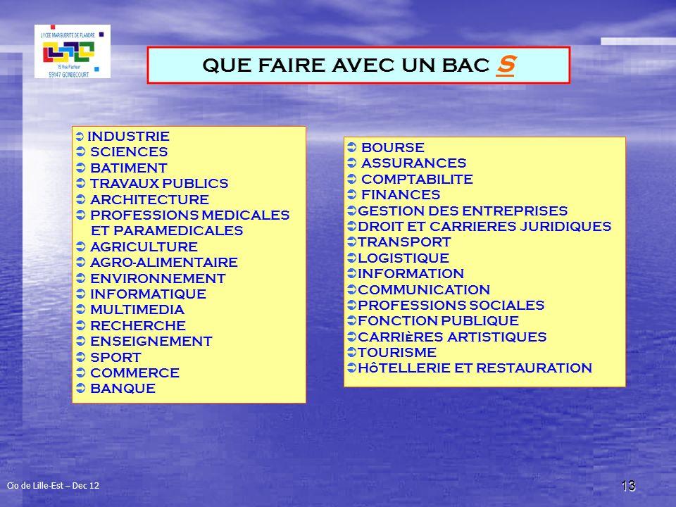 13 QUE FAIRE AVEC UN BAC S INDUSTRIE SCIENCES BATIMENT TRAVAUX PUBLICS ARCHITECTURE PROFESSIONS MEDICALES ET PARAMEDICALES AGRICULTURE AGRO-ALIMENTAIRE ENVIRONNEMENT INFORMATIQUE MULTIMEDIA RECHERCHE ENSEIGNEMENT SPORT COMMERCE BANQUE BOURSE ASSURANCES COMPTABILITE FINANCES GESTION DES ENTREPRISES DROIT ET CARRIERES JURIDIQUES TRANSPORT LOGISTIQUE INFORMATION COMMUNICATION PROFESSIONS SOCIALES FONCTION PUBLIQUE CARRIèRES ARTISTIQUES TOURISME HôTELLERIE ET RESTAURATION Cio de Lille-Est – Dec 12