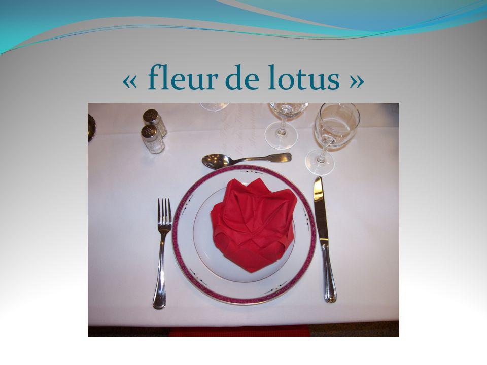 « fleur de lotus »