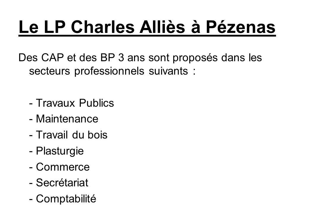 Le LP Charles Alliès à Pézenas Des CAP et des BP 3 ans sont proposés dans les secteurs professionnels suivants : - Travaux Publics - Maintenance - Tra