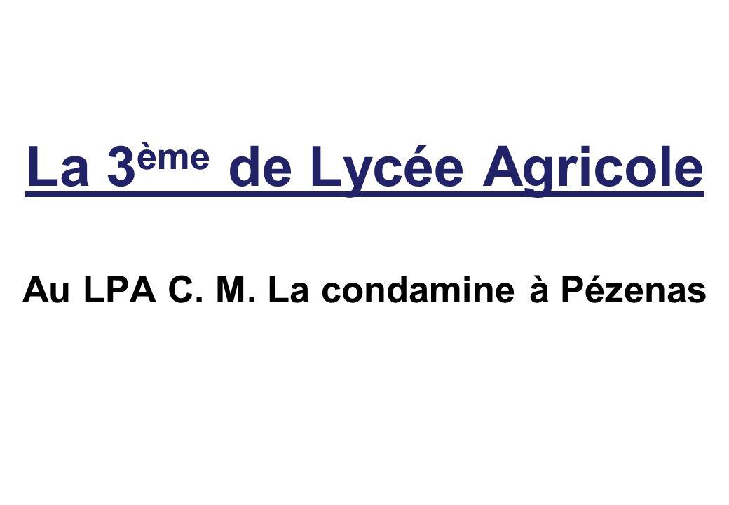 La 3 ème de Lycée Agricole Au LPA C. M. La condamine à Pézenas