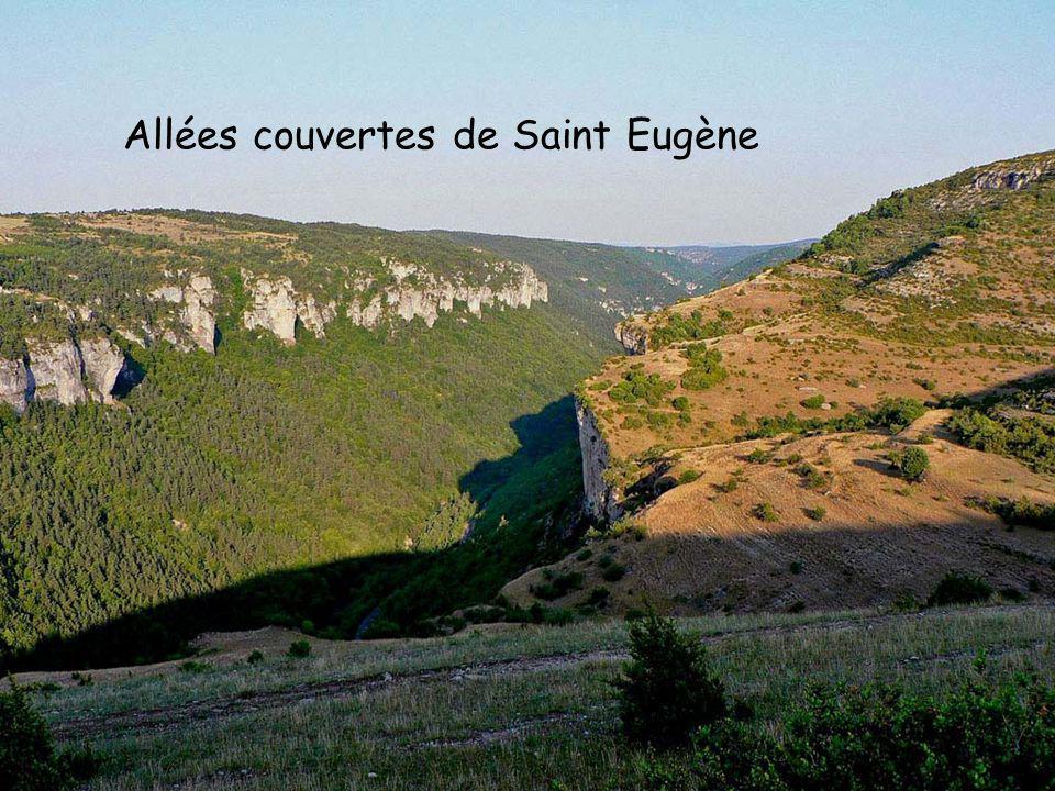 Allées couvertes de Saint Eugène
