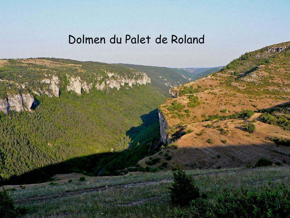 Allée couverte Sous le terme dAllée couverte, on désigne un type particulier de dolmen.
