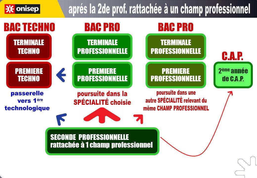 BAC PRO SECONDE PROFESSIONNELLE rattachée à 1 champ professionnel PREMIERE PROFESSIONNELLE TERMINALE PROFESSIONNELLE BAC PRO PREMIERE PROFESSIONNELLE
