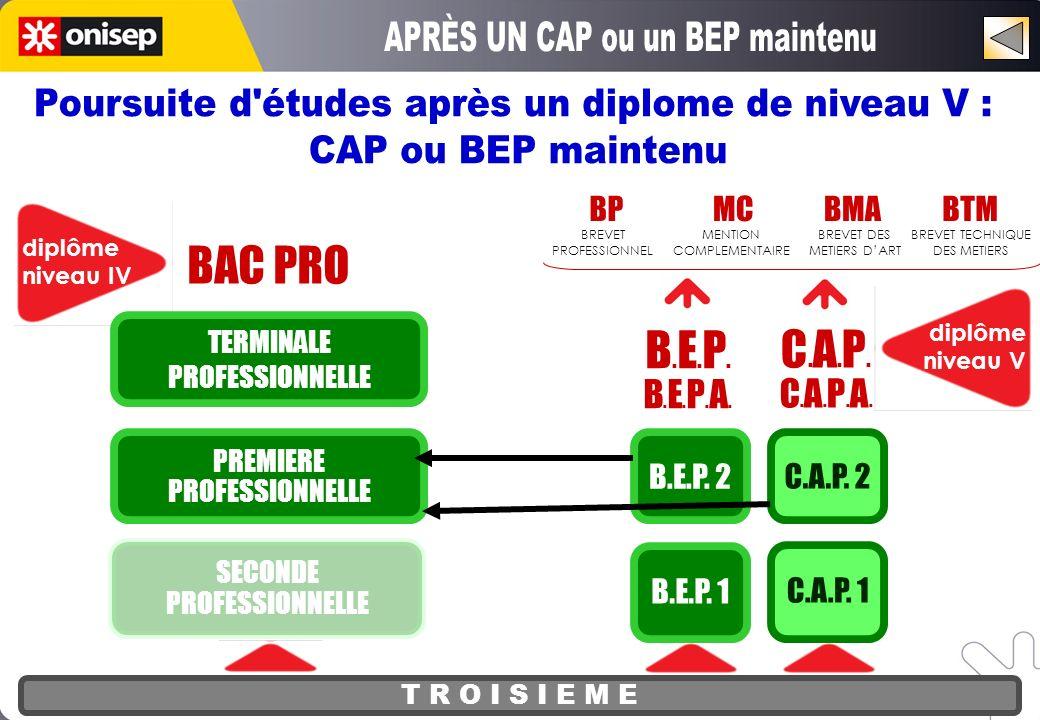 T R O I S I E M E BAC PRO diplôme niveau IV SECONDE PROFESSIONNELLE PREMIERE PROFESSIONNELLE TERMINALE PROFESSIONNELLE diplôme niveau V C.A.P.C.A.P.A.