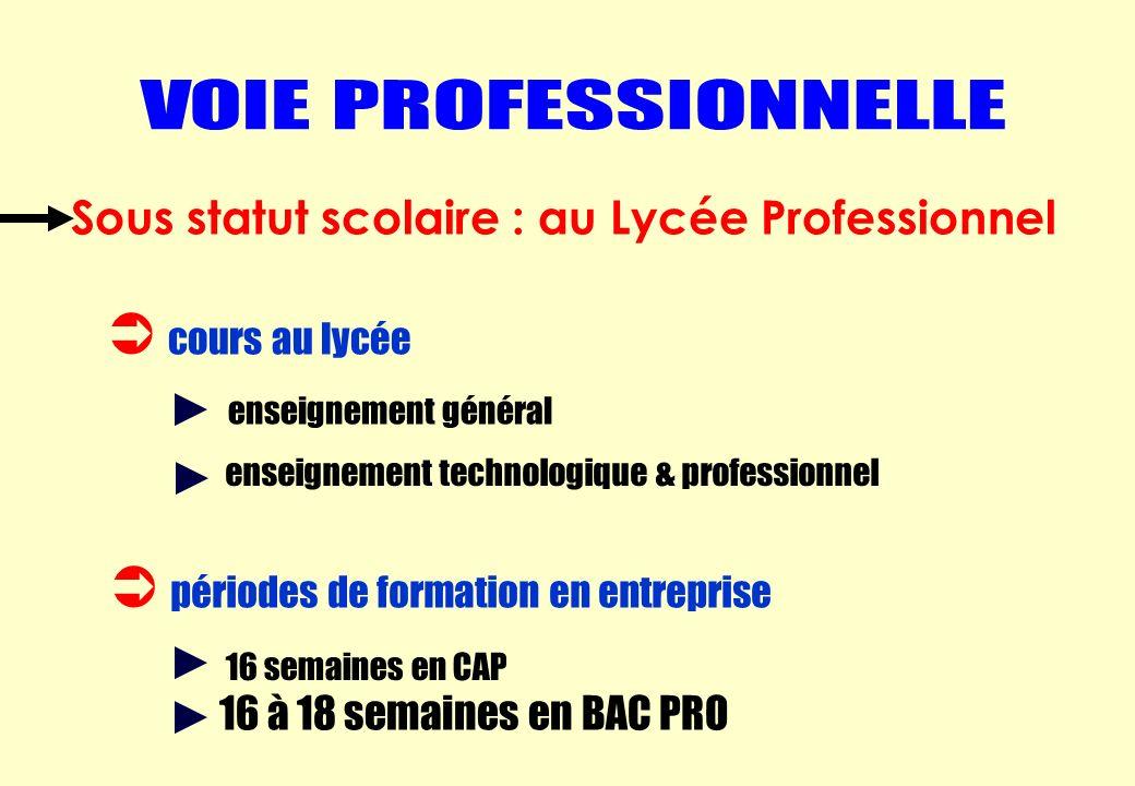 cours au lycée périodes de formation en entreprise enseignement général enseignement technologique & professionnel 16 semaines en CAP 16 à 18 semaines