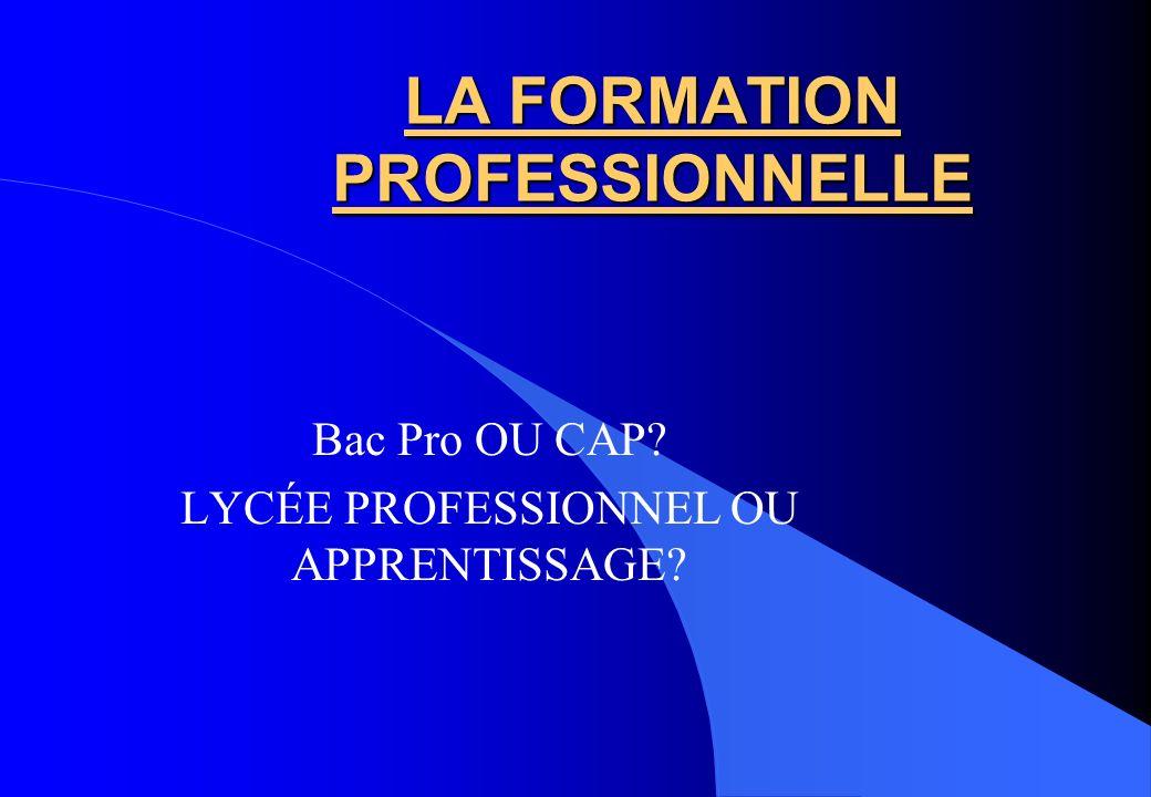 LA FORMATION PROFESSIONNELLE Bac Pro OU CAP? LYCÉE PROFESSIONNEL OU APPRENTISSAGE?