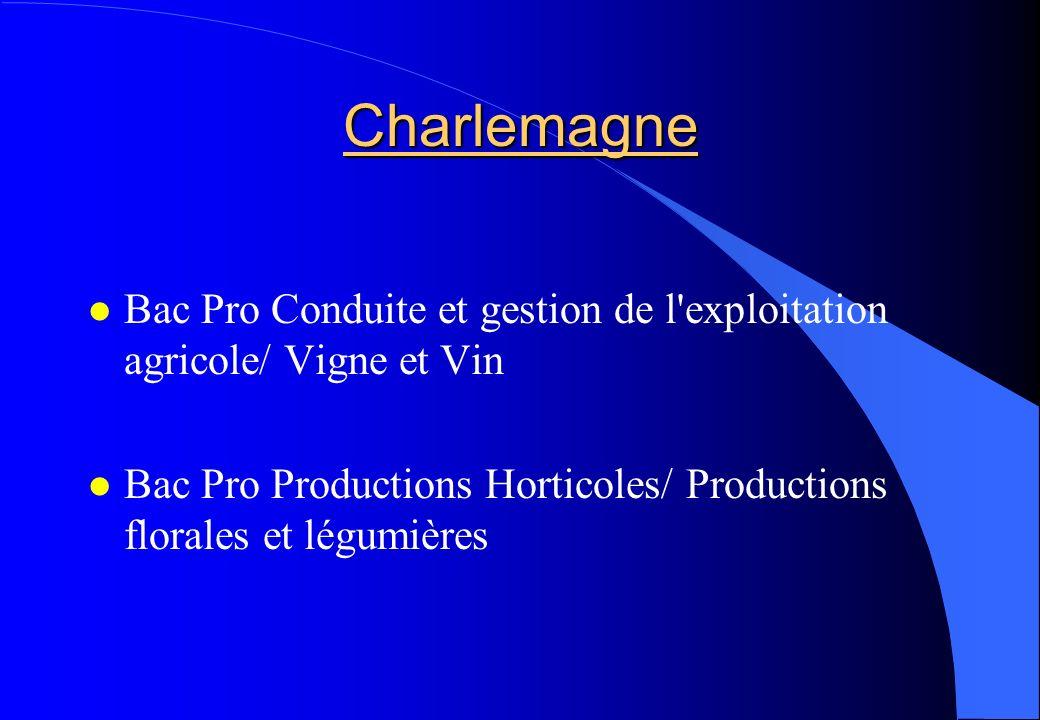 Charlemagne Bac Pro Conduite et gestion de l'exploitation agricole/ Vigne et Vin Bac Pro Productions Horticoles/ Productions florales et légumières