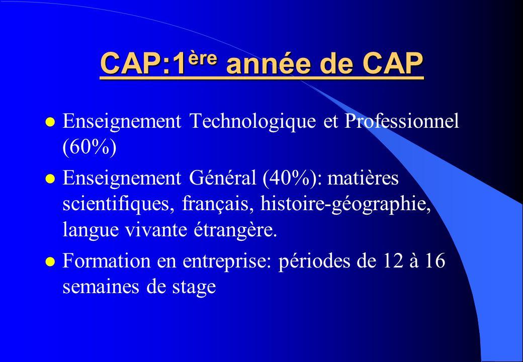CAP:1 ère année de CAP Enseignement Technologique et Professionnel (60%) Enseignement Général (40%): matières scientifiques, français, histoire-géogra