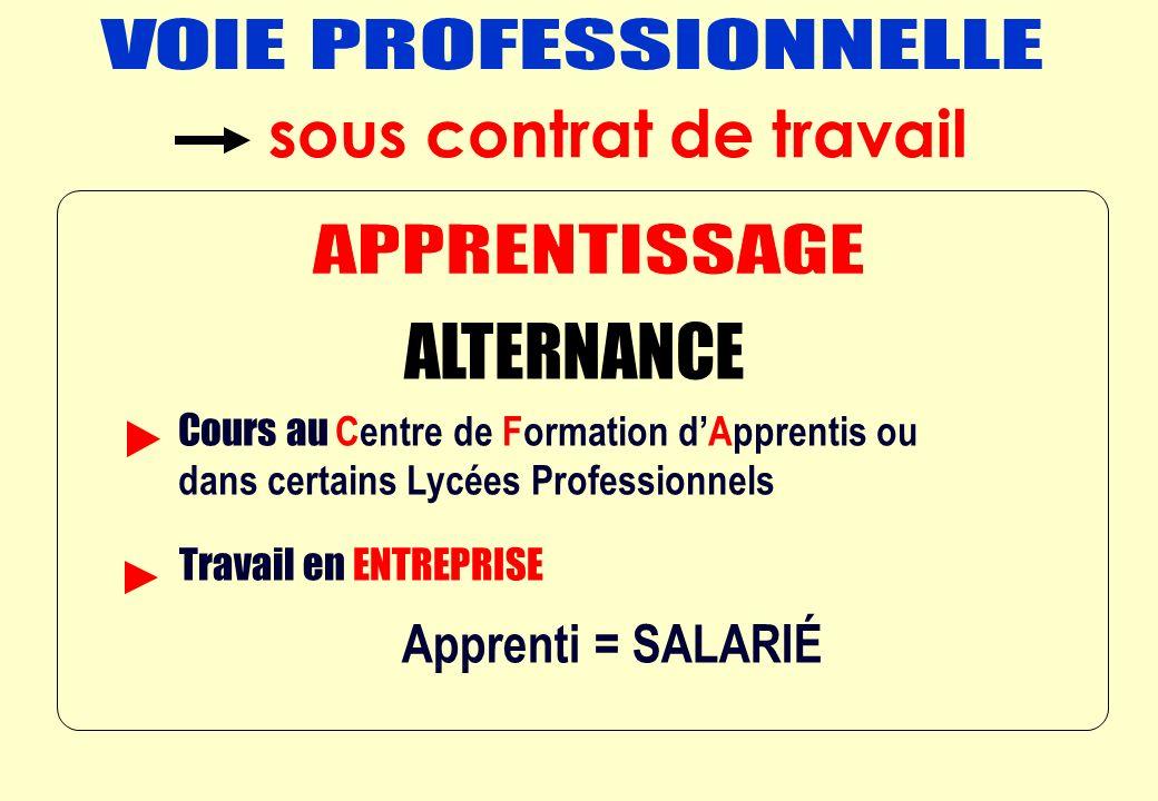 ALTERNANCE = Apprenti = SALARIÉ Cours au Centre de Formation dApprentis ou dans certains Lycées Professionnels Travail en ENTREPRISE sous contrat de travail
