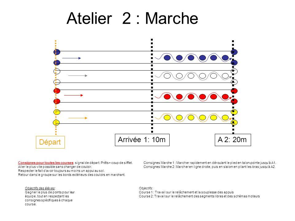 Atelier 2 : Marche Consignes Marche 1 : Marcher rapidement en déroulant le pied en talon-pointe jusquà A1. Consignes Marche 2: Marcher en ligne droite