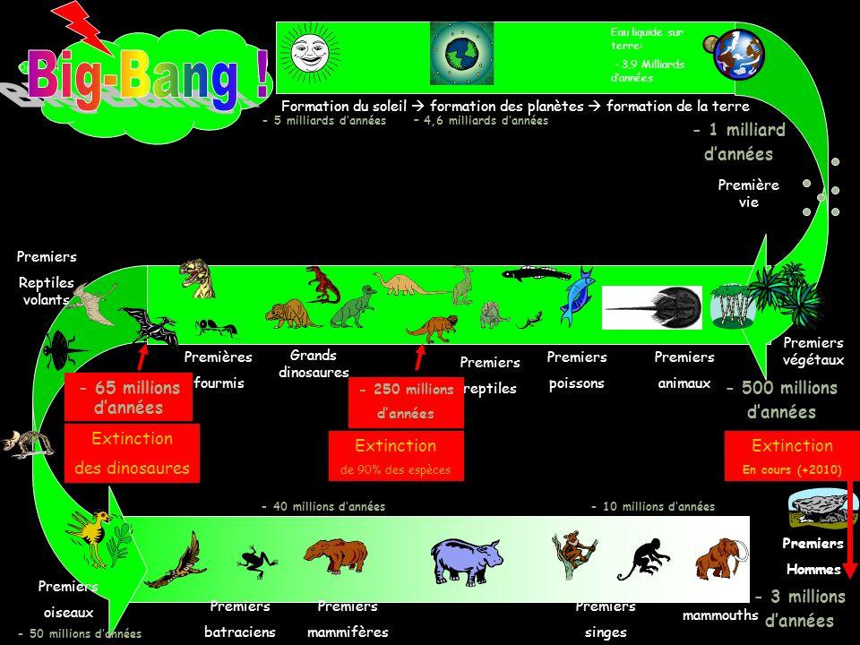 Les dinosaures ont disparu il y a 65 millions dannées. Cétait déjà une « crise » dextinction. En ce moment, des êtres vivants disparaissent. Cest la s