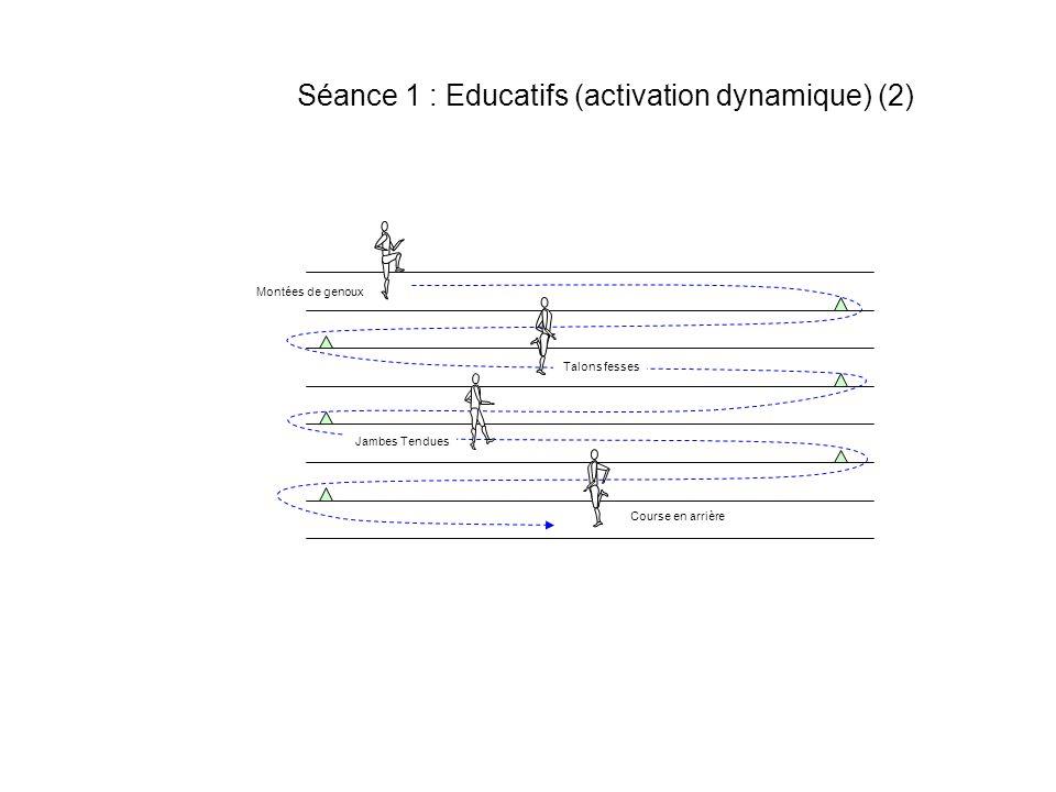 Séance 1 : Educatifs (activation dynamique) (2) Montées de genoux Talons fesses Jambes Tendues Course en arrière