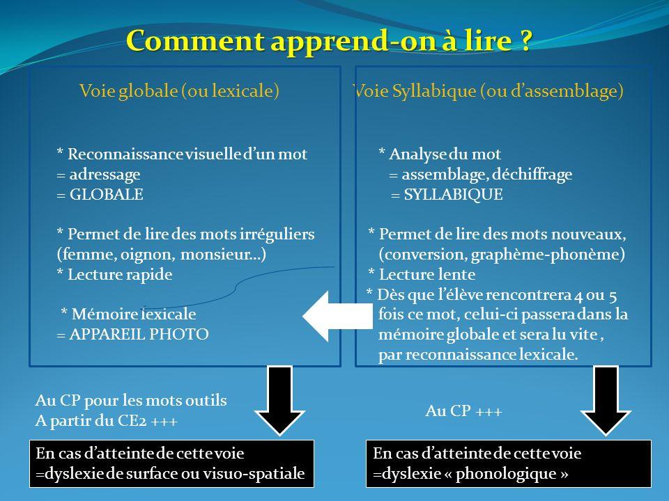 Voie globale (ou lexicale) Voie Syllabique (ou dassemblage) * Reconnaissance visuelle dun mot * Analyse du mot = adressage = assemblage, déchiffrage =
