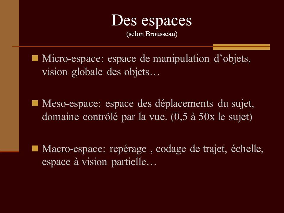 Des espaces (selon Brousseau) Micro-espace: espace de manipulation dobjets, vision globale des objets… Meso-espace: espace des déplacements du sujet,