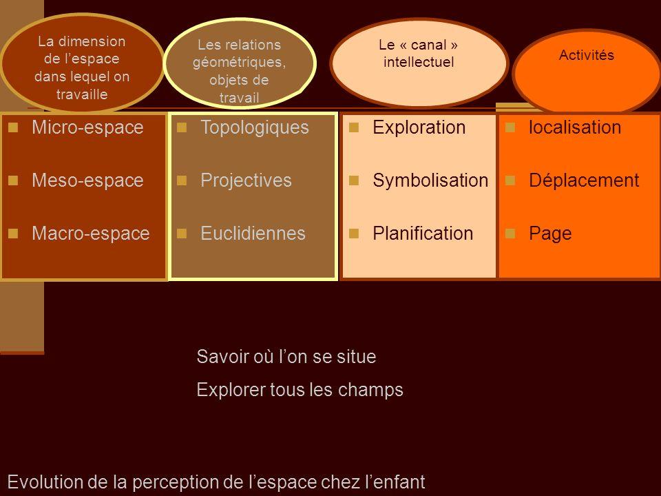 Micro-espace Meso-espace Macro-espace Exploration Symbolisation Planification Topologiques Projectives Euclidiennes La dimension de lespace dans leque