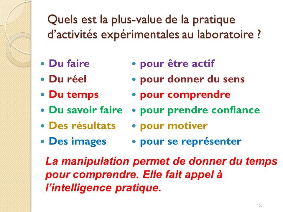 Quels est la plus-value de la pratique dactivités expérimentales au laboratoire ? Du faire Du réel Du temps Du savoir faire Des résultats Des images 1