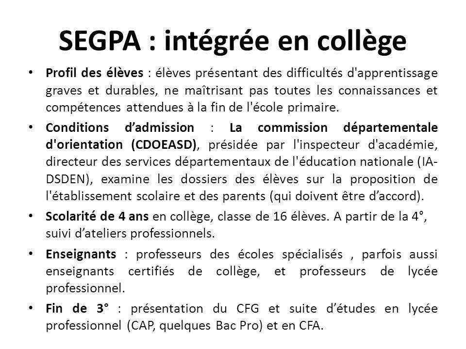 SEGPA : intégrée en collège Profil des élèves : élèves présentant des difficultés d'apprentissage graves et durables, ne maîtrisant pas toutes les con