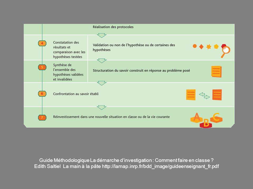 Guide Méthodologique La démarche dinvestigation : Comment faire en classe ? Edith Saltiel La main à la pâte http://lamap.inrp.fr/bdd_image/guideenseig