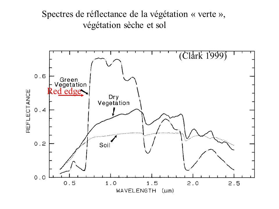 Red edge (Clark 1999) Spectres de réflectance de la végétation « verte », végétation sèche et sol