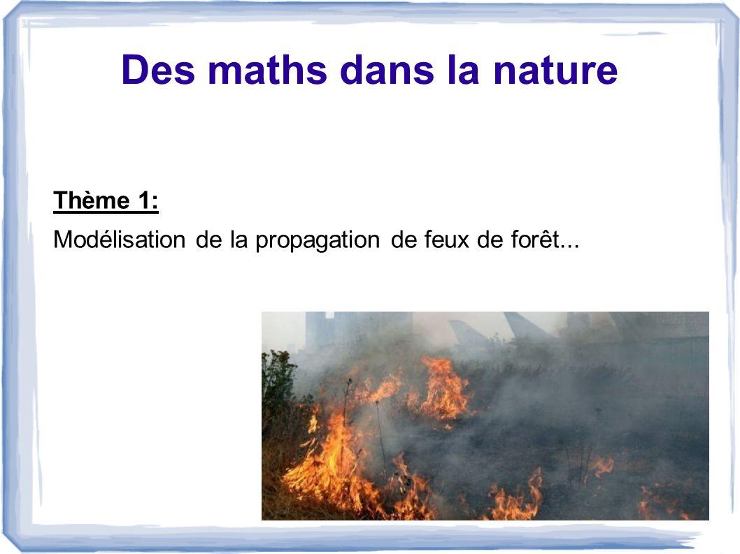 Propagation des feux de forêt On utilise les automates cellulaires: La foret est représentés par des cellules: les vertes: arbres Les blanches: rien puis, on allume une cellule (cellule rouge)...