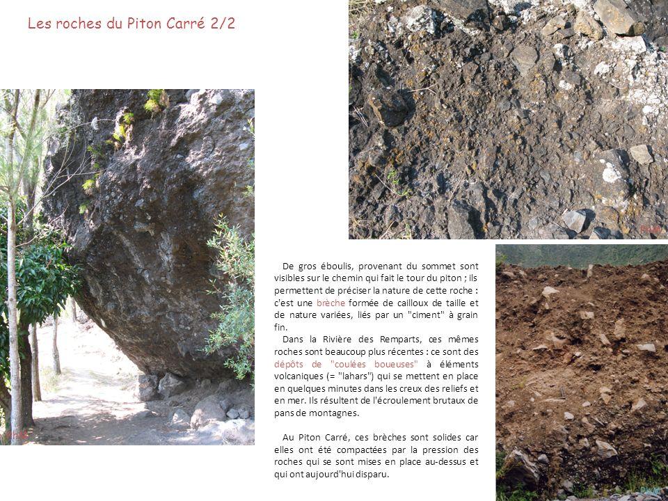 Les roches sous le Piton Carré 1/4 Les roches au-dessous des brèches se présentent en couches plus ou moins horizontales, recoupées par des filons verticaux.