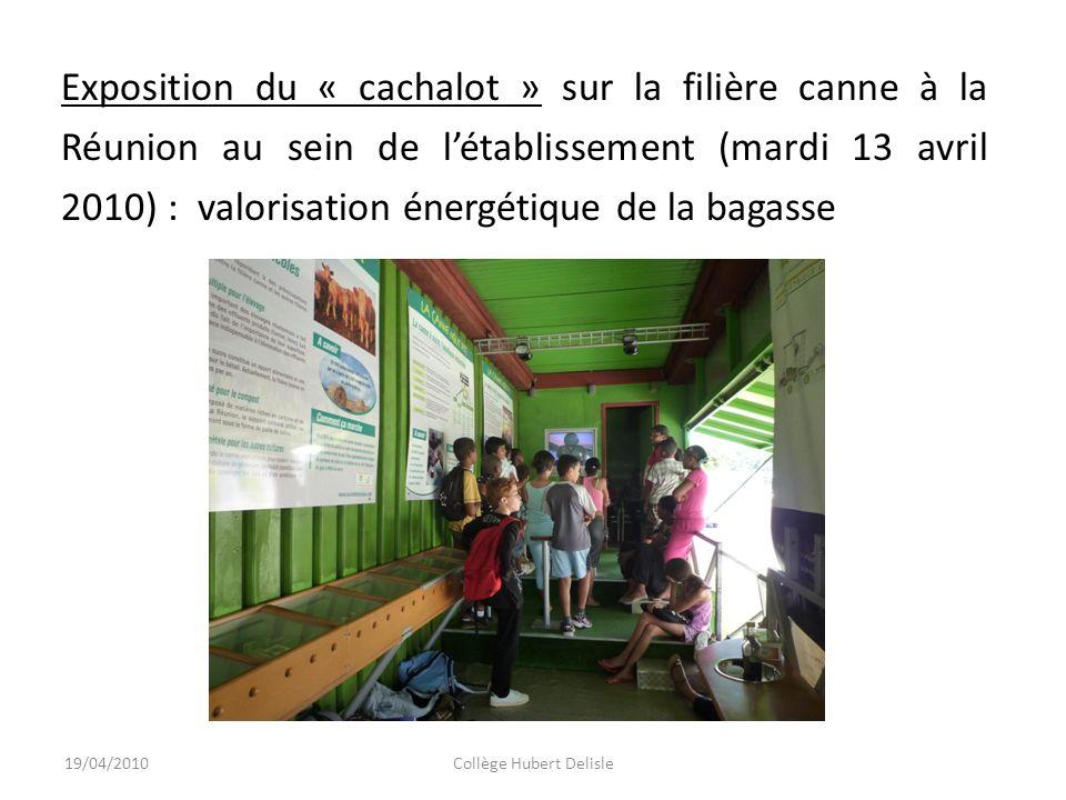 19/04/2010Collège Hubert Delisle Exposition du « cachalot » sur la filière canne à la Réunion au sein de létablissement (mardi 13 avril 2010) : valorisation énergétique de la bagasse