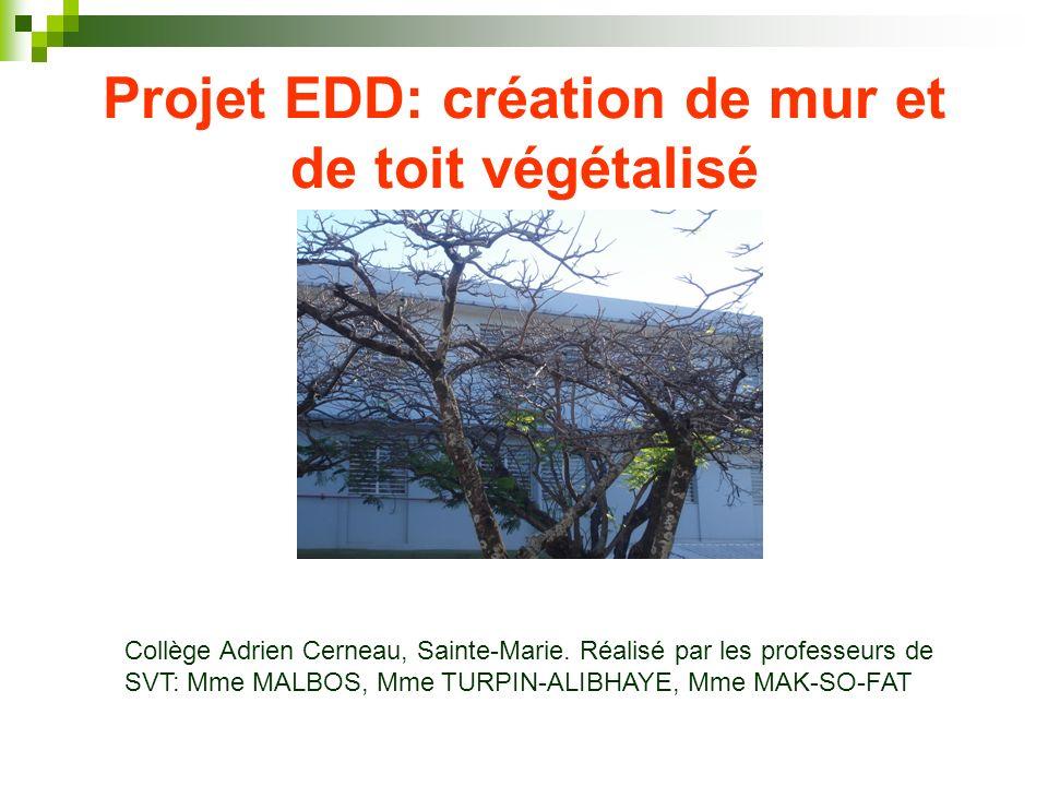 Projet EDD: création de mur et de toit végétalisé Collège Adrien Cerneau, Sainte-Marie. Réalisé par les professeurs de SVT: Mme MALBOS, Mme TURPIN-ALI