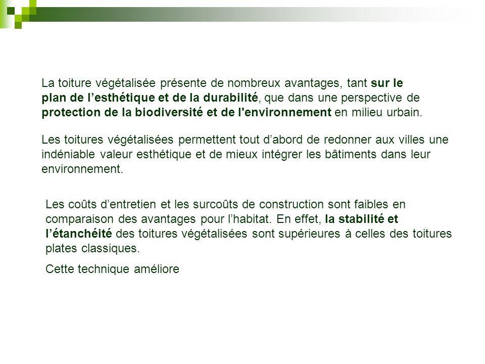 La toiture végétalisée présente de nombreux avantages, tant sur le plan de lesthétique et de la durabilité, que dans une perspective de protection de