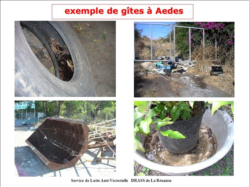 exemple de gîtes à Aedes exemple de gîtes à Aedes