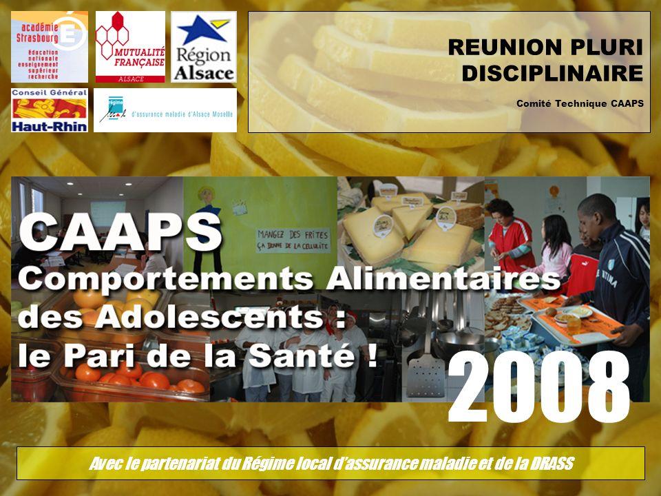REUNION PLURI DISCIPLINAIRE Comité Technique CAAPS 2008 Avec le partenariat du Régime local dassurance maladie et de la DRASS