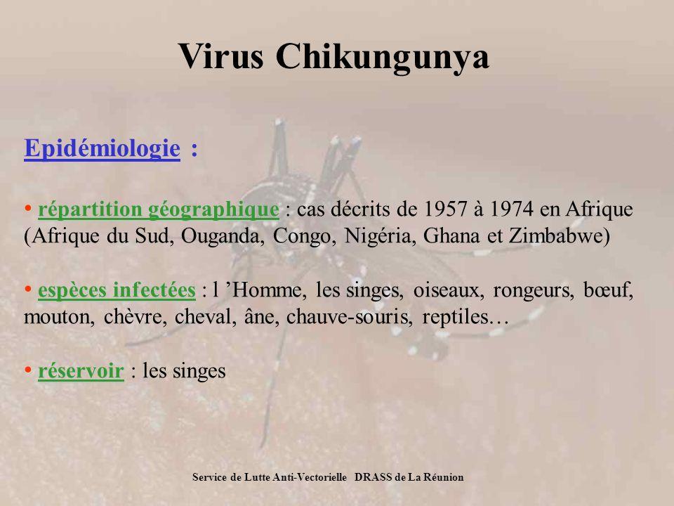 Chikungunya : une arbovirose difficile à éradiquer Chk – paludisme : 2 modèles différents ChkPaludisme Écologie du vecteur Traitement Connaissances Gîtes naturels et anthropiques (toute collection deau) Transmission toute lannée moustique exophile Pas de vaccin Pas de médicament Maladie peu connue, Première occurrence dans un pays développé Gîtes naturels Ravines, champs de cannes Transmission saisonnière moustique endophile Médicaments, Chimioprophylaxie Maladie largement décrite Nombreuses études Chikungunya - Information DRASS- 23 novembre 2005