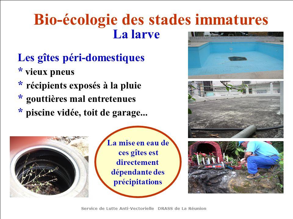 Les gîtes péri-domestiques * vieux pneus * récipients exposés à la pluie * gouttières mal entretenues * piscine vidée, toit de garage...