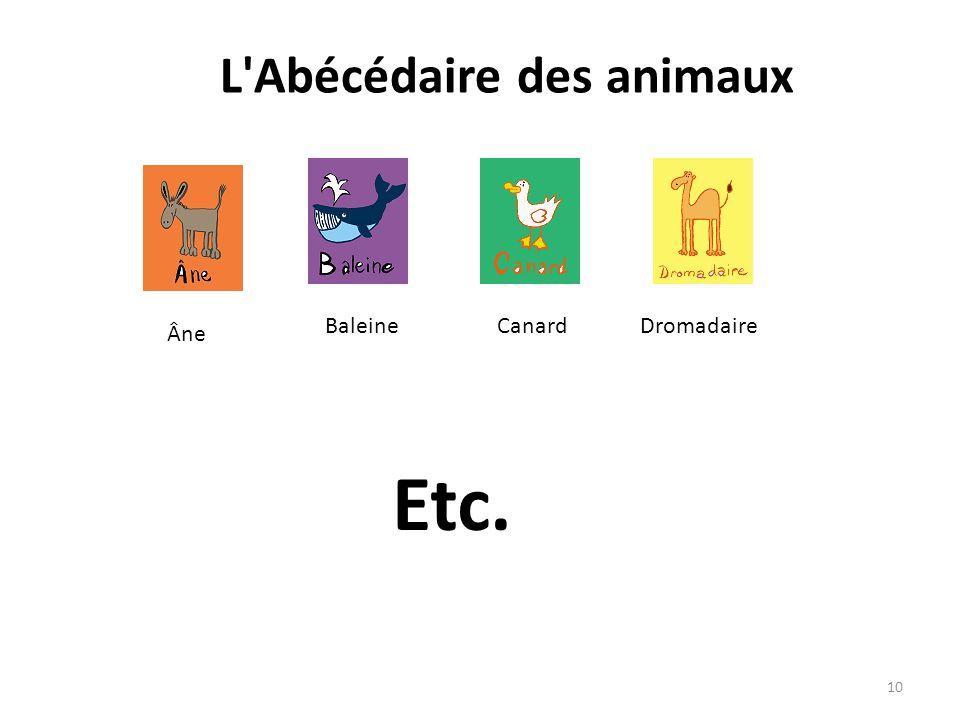 L'Abécédaire des animaux Âne BaleineCanardDromadaire Etc. 10