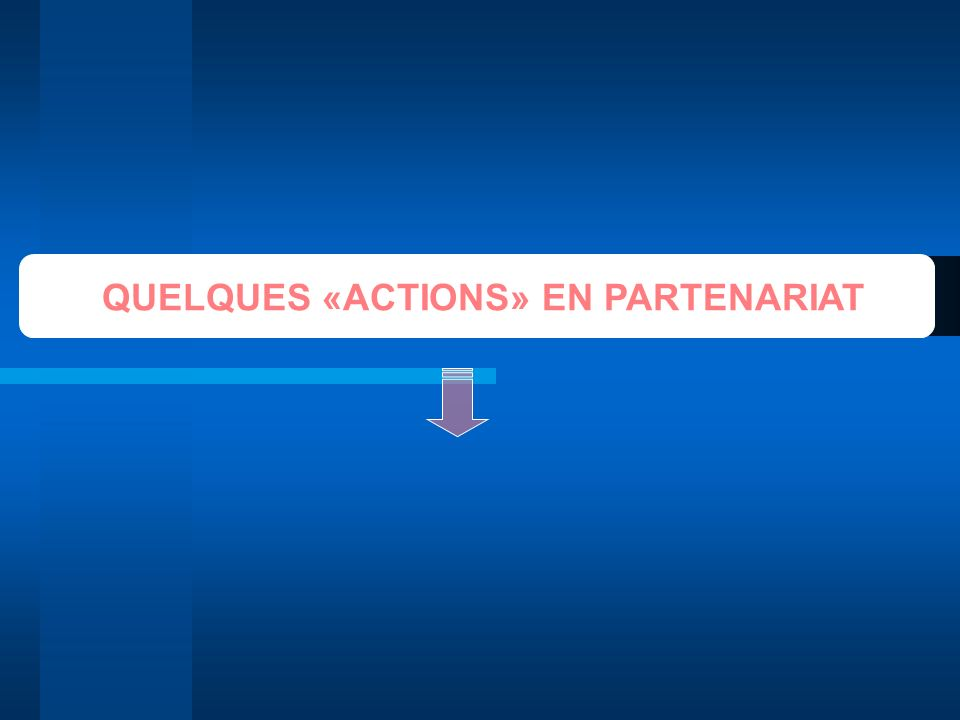 QUELQUES «ACTIONS» EN PARTENARIAT