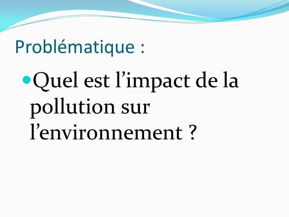 Problématique : Quel est limpact de la pollution sur lenvironnement ?