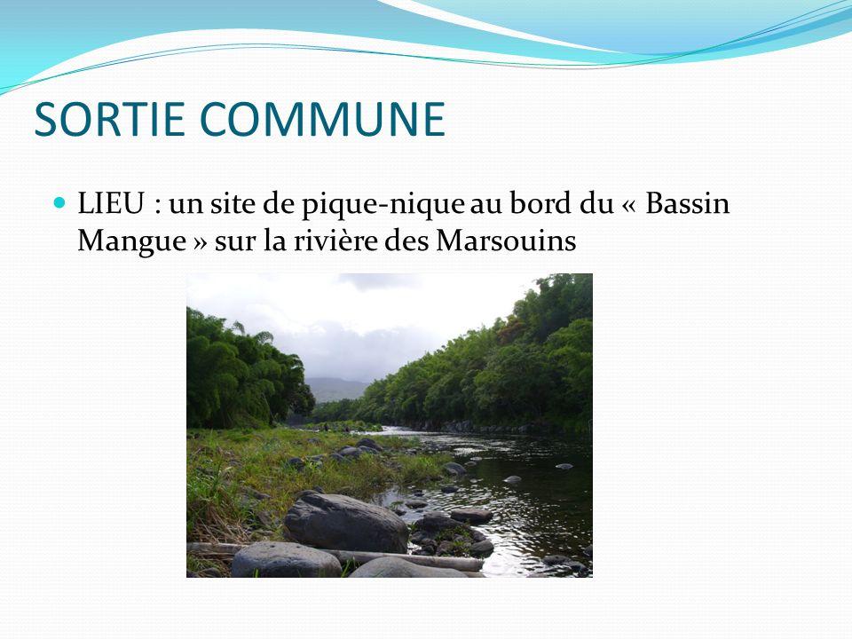 SORTIE COMMUNE LIEU : un site de pique-nique au bord du « Bassin Mangue » sur la rivière des Marsouins