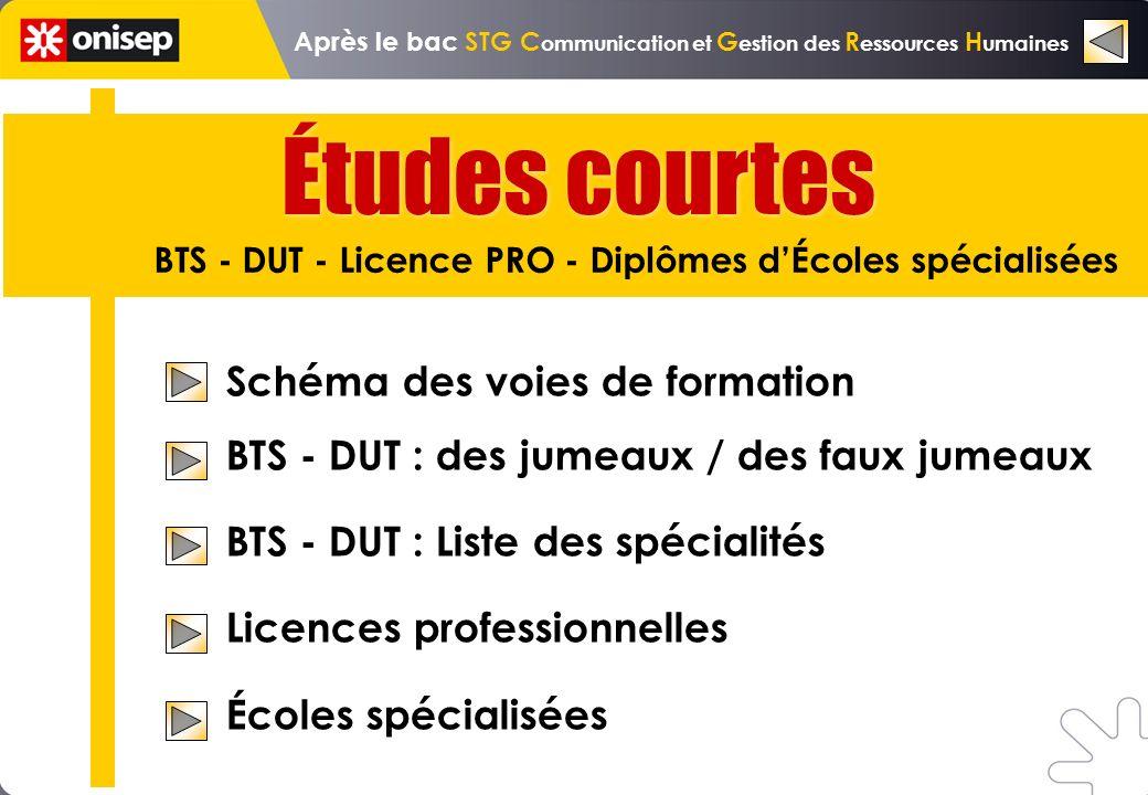 Schéma des voies de formation BTS - DUT : des jumeaux / des faux jumeaux BTS - DUT : Liste des spécialités Licences professionnelles Écoles spécialisé