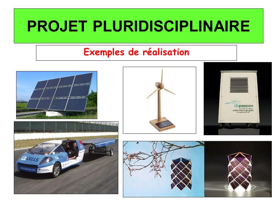 PROJET PLURIDISCIPLINAIRE Exemples de réalisation