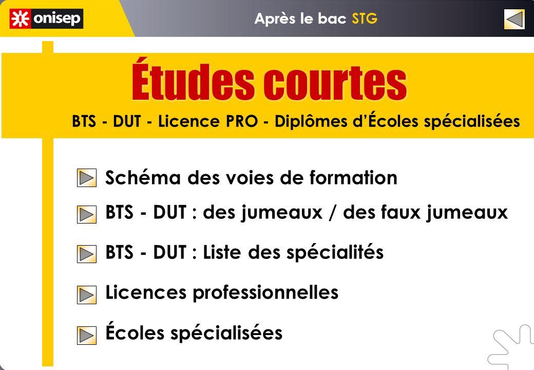 Études courtes BTS - DUT - Licence PRO - Diplômes dÉcoles spécialisées Après le bac STG Schéma des voies de formation BTS - DUT : des jumeaux / des fa