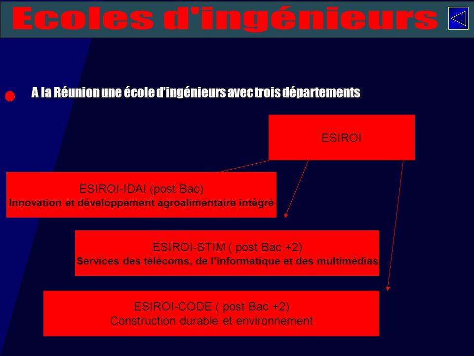A la Réunion une école dingénieurs avec trois départements ESIROI ESIROI-IDAI (post Bac) Innovation et développement agroalimentaire intégré ESIROI-ST