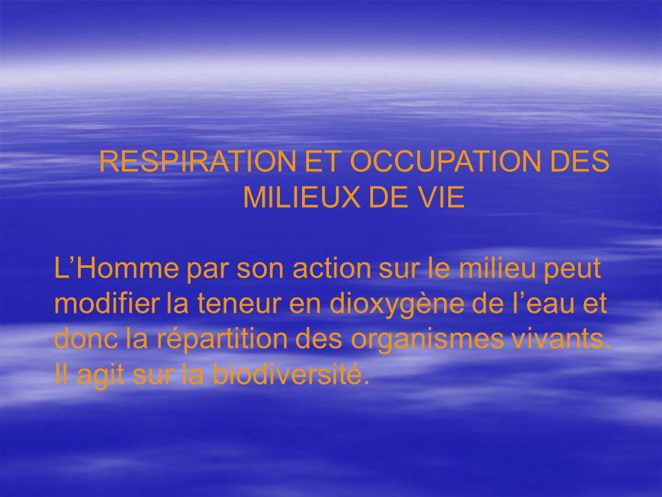 RESPIRATION ET OCCUPATION DES MILIEUX DE VIE LHomme par son action sur le milieu peut modifier la teneur en dioxygène de leau et donc la répartition d