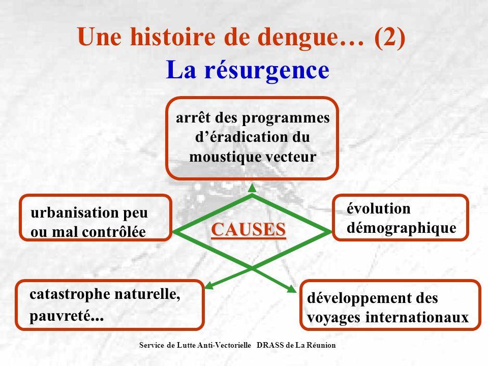 Service de Lutte Anti-Vectorielle DRASS de La Réunion Une histoire de dengue… (2) La résurgence CAUSES arrêt des programmes déradication du moustique