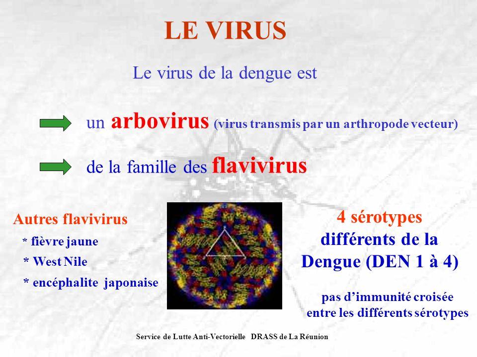Service de Lutte Anti-Vectorielle DRASS de La Réunion LE VIRUS Le virus de la dengue est un arbovirus (virus transmis par un arthropode vecteur) de la