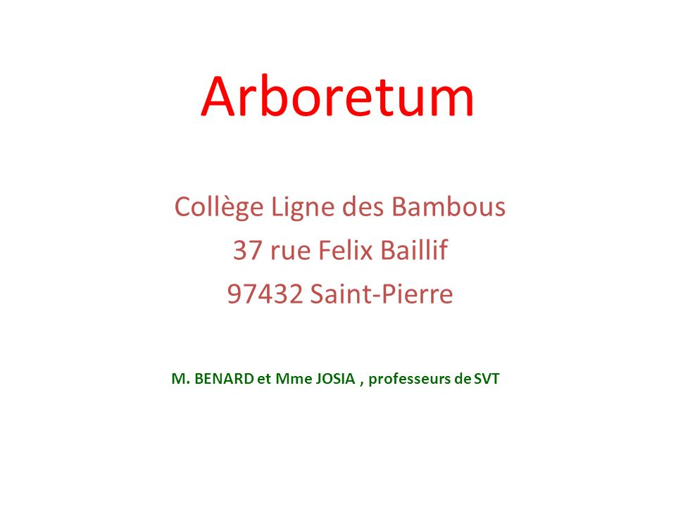 Arboretum Collège Ligne des Bambous 37 rue Felix Baillif 97432 Saint-Pierre M. BENARD et Mme JOSIA, professeurs de SVT